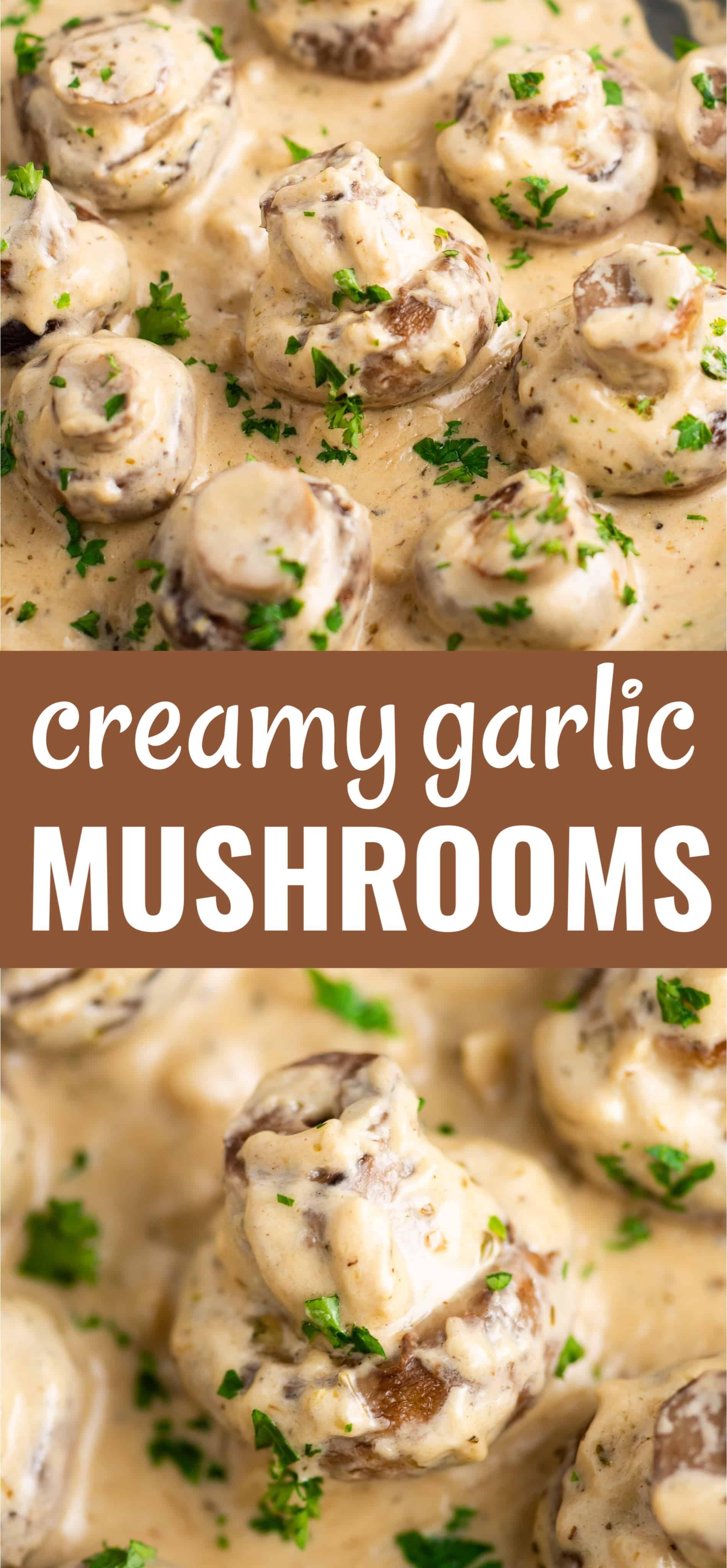 Creamy Garlic Mushrooms Recipe - Build Your Bite