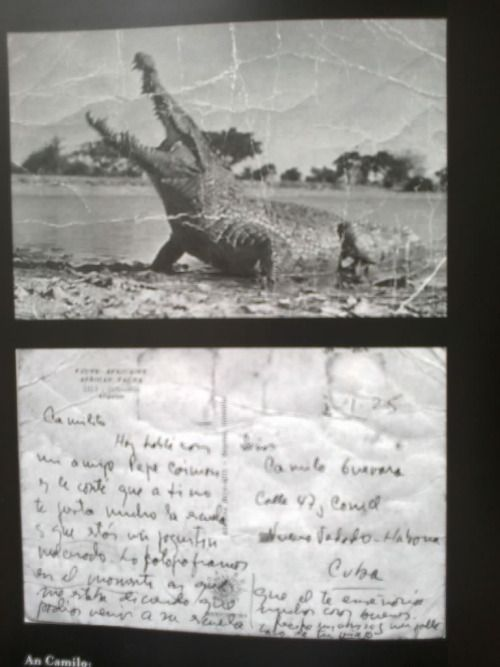 Che's postcard to his son, Camilo from Africa