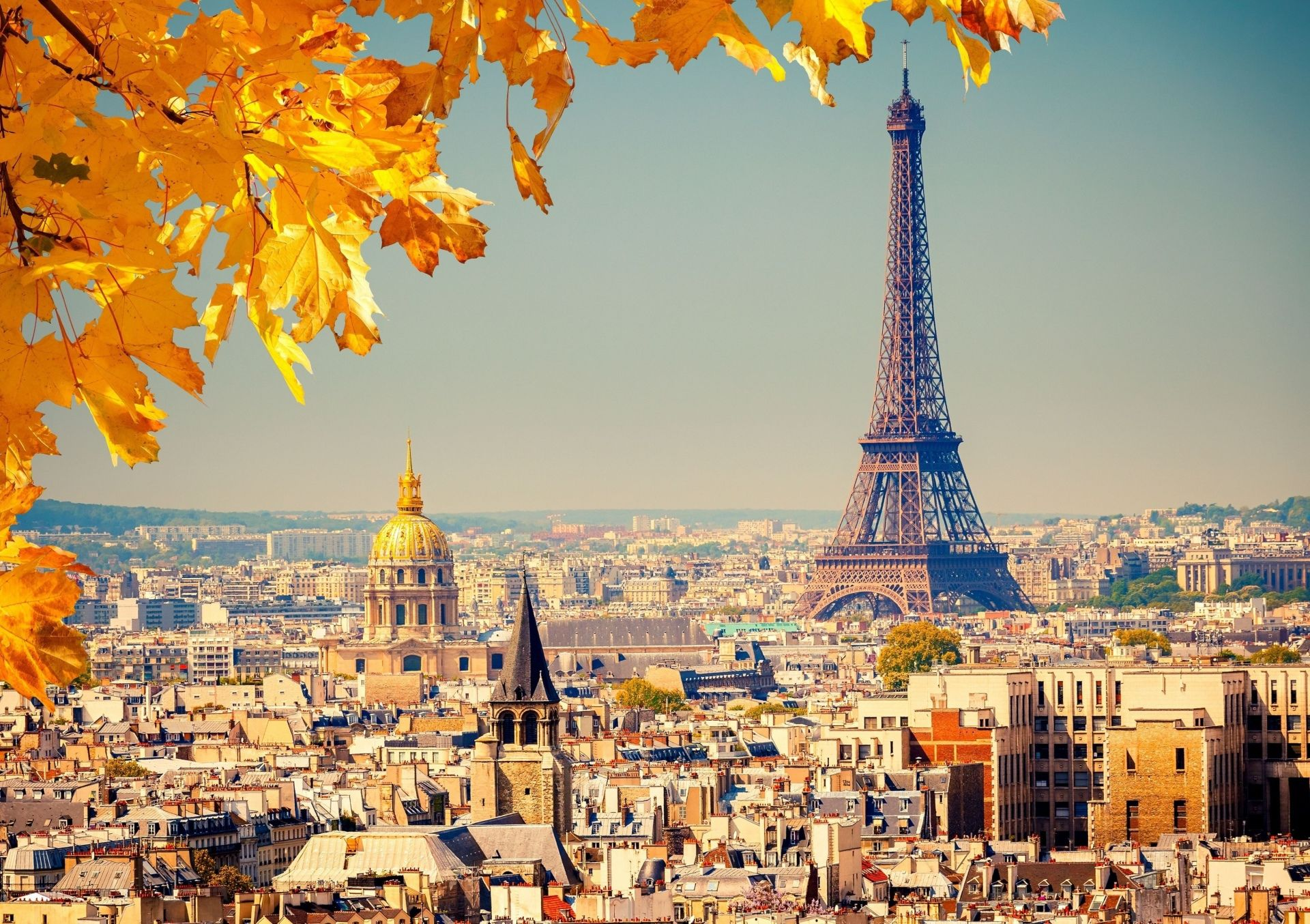 Construction Humaine Tour Eiffel  Paris France Foliage Fond d'écran
