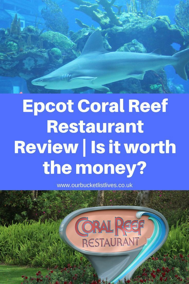 Epcot Coral Reef Restaurant Review Walt Disney World Hints Tips