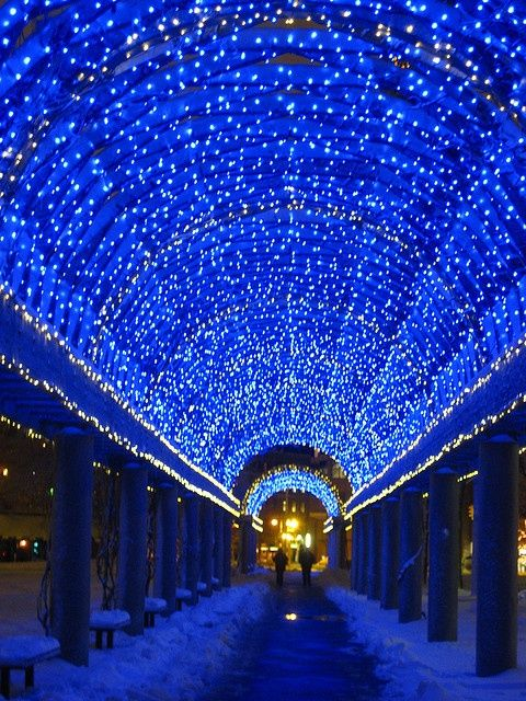 This Is So Pretty I Have Never Seen The Trellis At Night Is This Like This All The Time Trip Columbus Park Travel