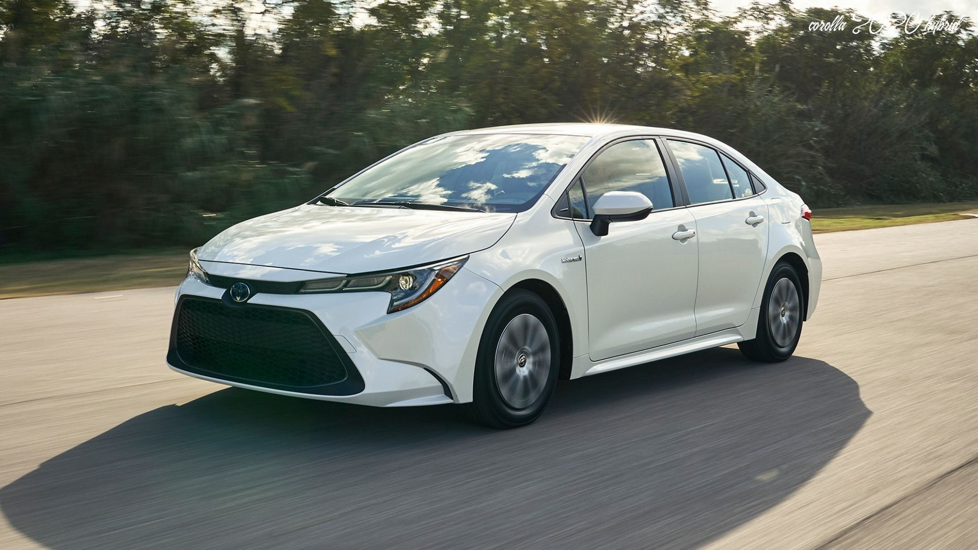 2020 Toyota Corolla Hybrid Le Toyota Corolla Toyota Corolla