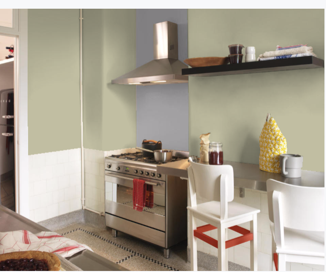 Overtly Olive Kitchen Paint: Loft Room, Living Room Paint
