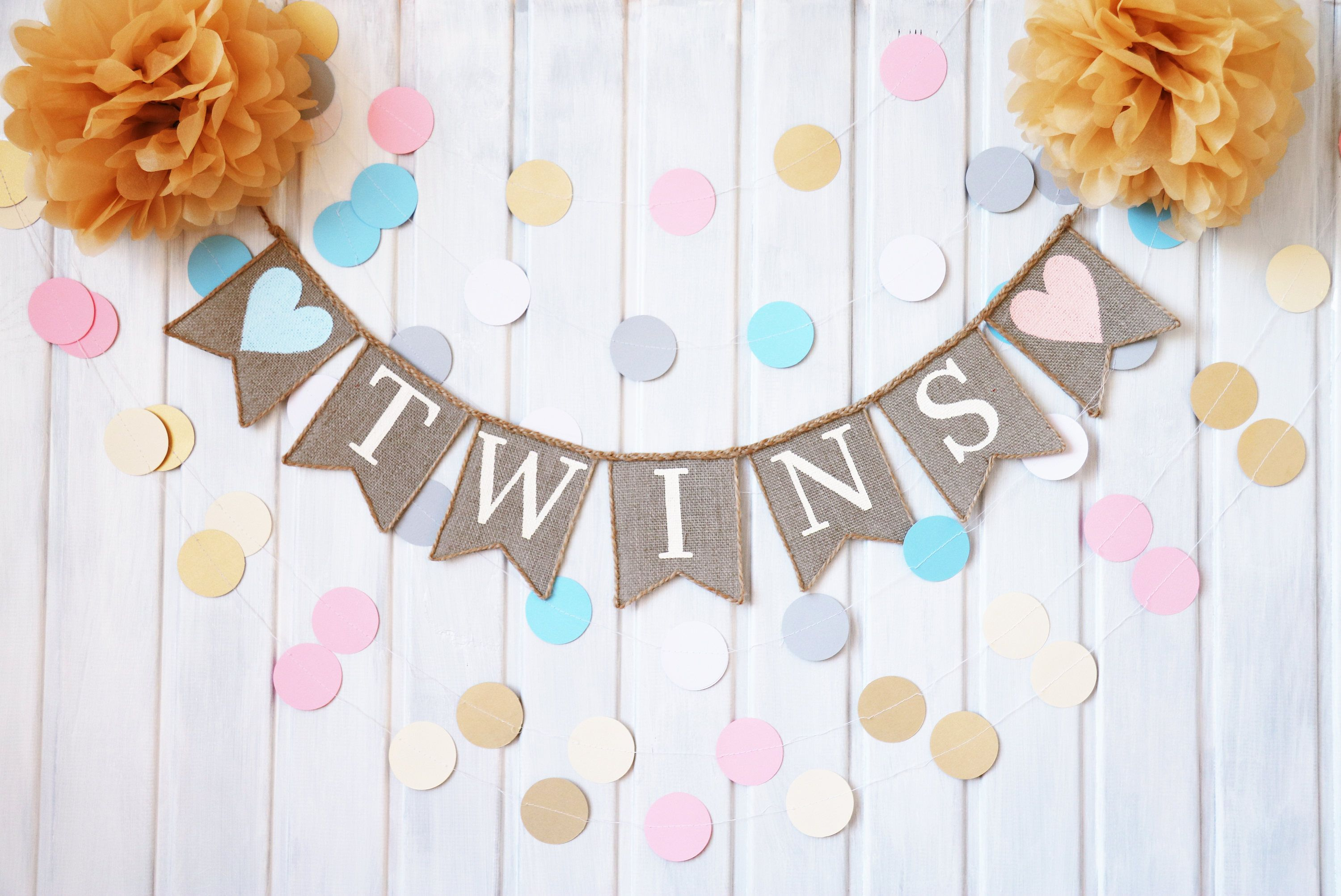 twins banner twins bunting twins baby shower decorations twins