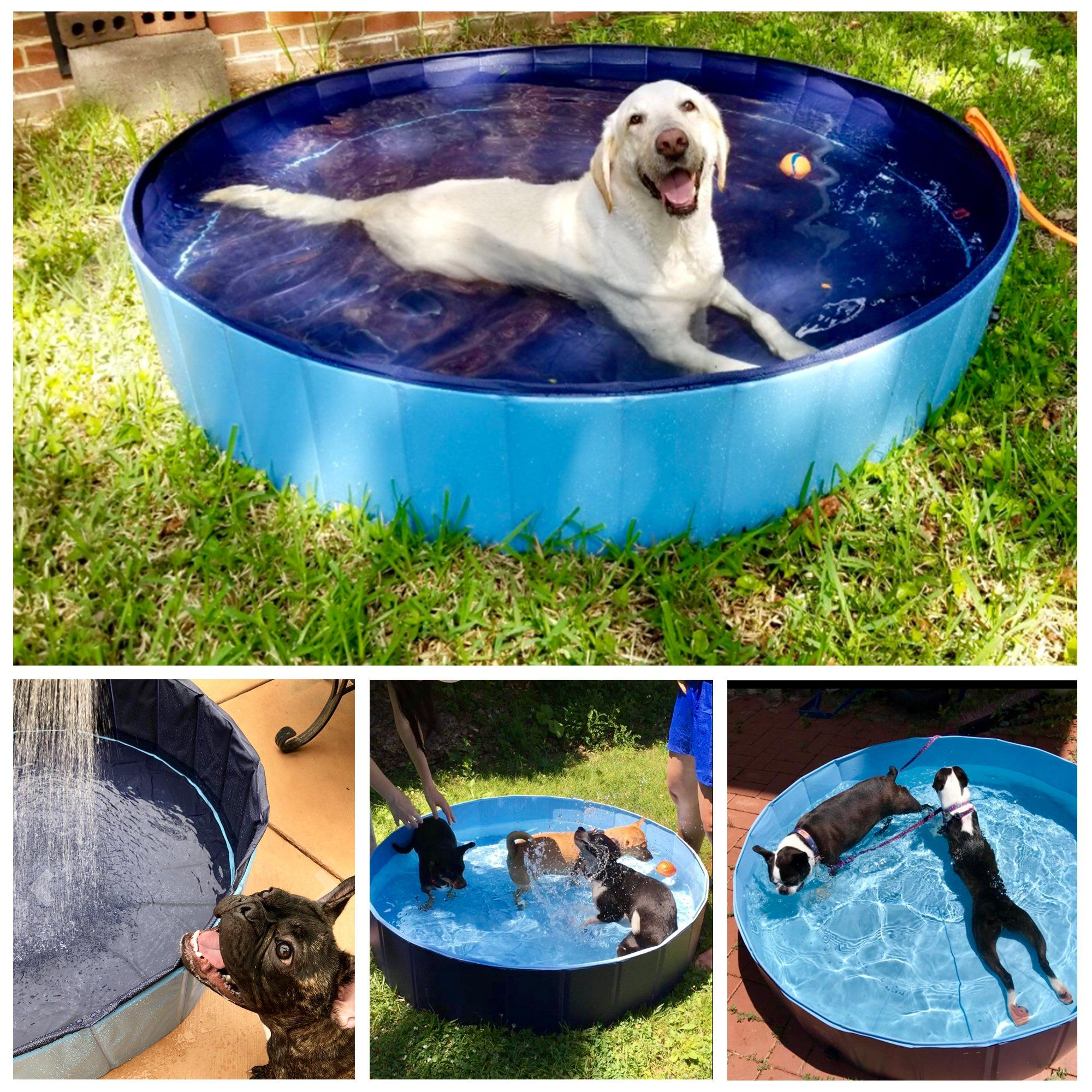 Kopeks Foldable Grey Grooming Bathing Pool Tub For Dogs Large
