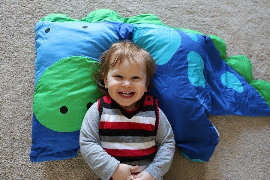 Loveable Animal Pillowcases, 8 Choices | Jane