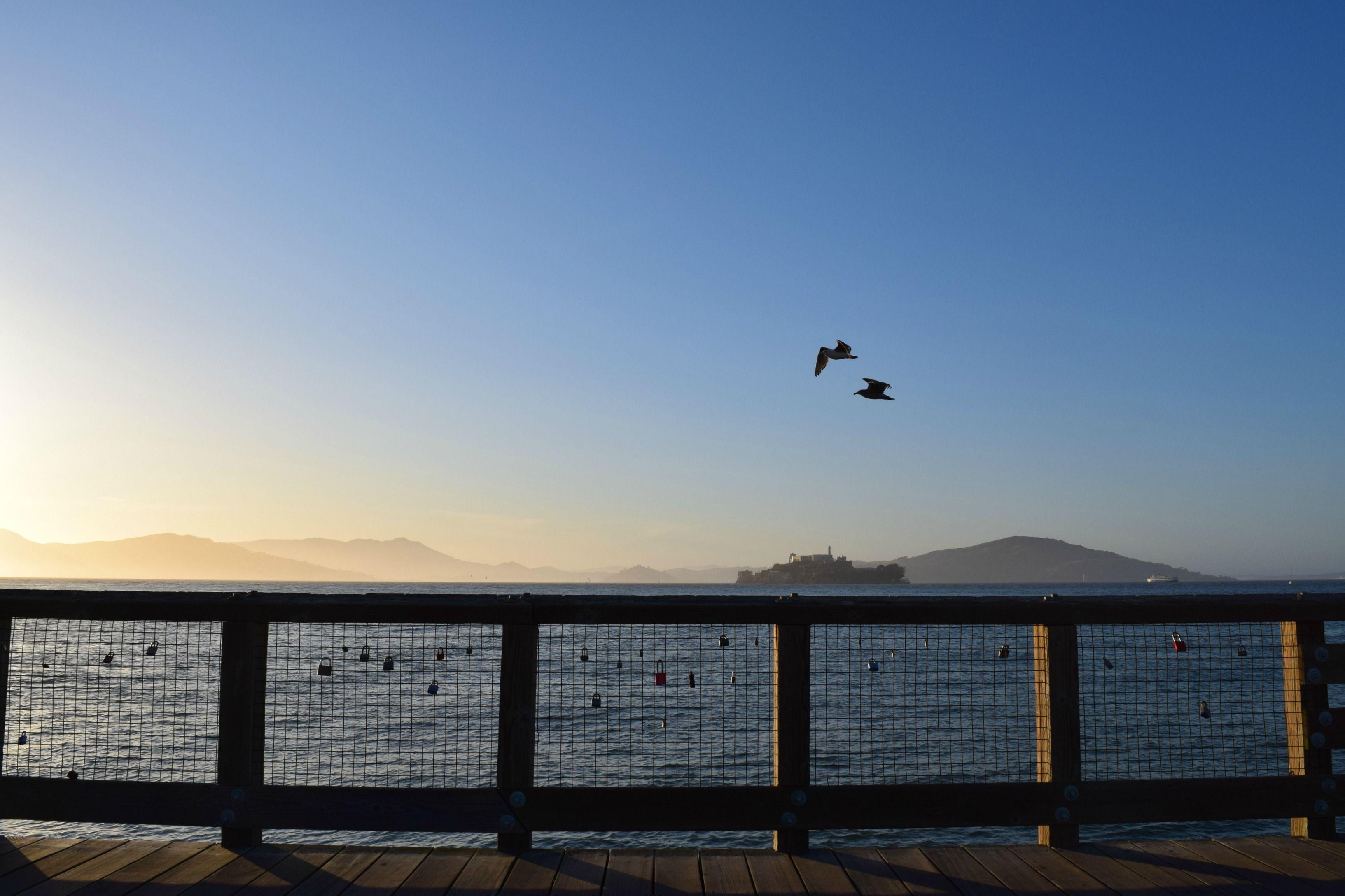 #birds #montains #change #sun