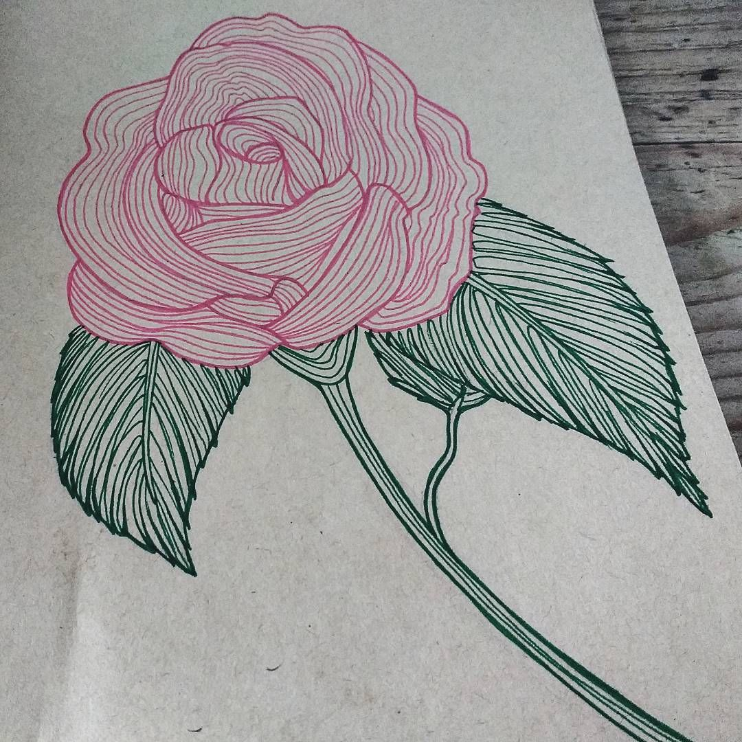 Tools staedtler triplus fineliner pink and green art artwotk