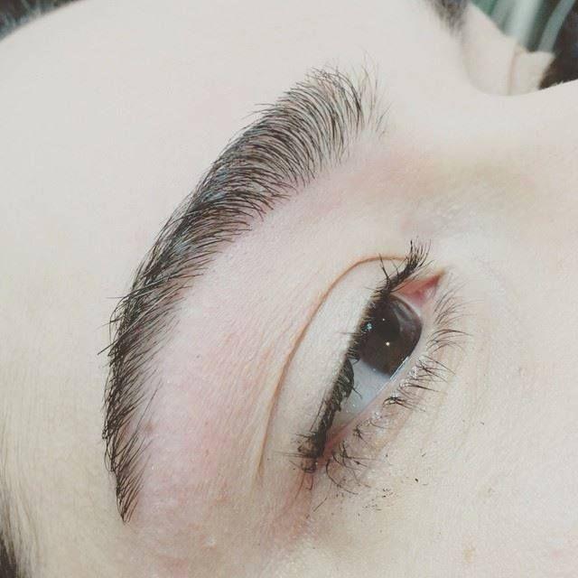 hd brows sverige