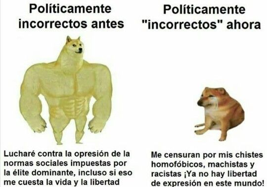 Politicamente Incorrecto Meme Del Perro Grande Y Perrito Pequeno Chiquito Doggo Dog Chemd Cheem Memes Divertidos Memes Memes Chistosisimos
