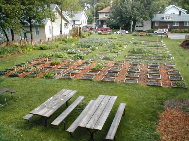 1000 images about Community Gardens on Pinterest Gardens