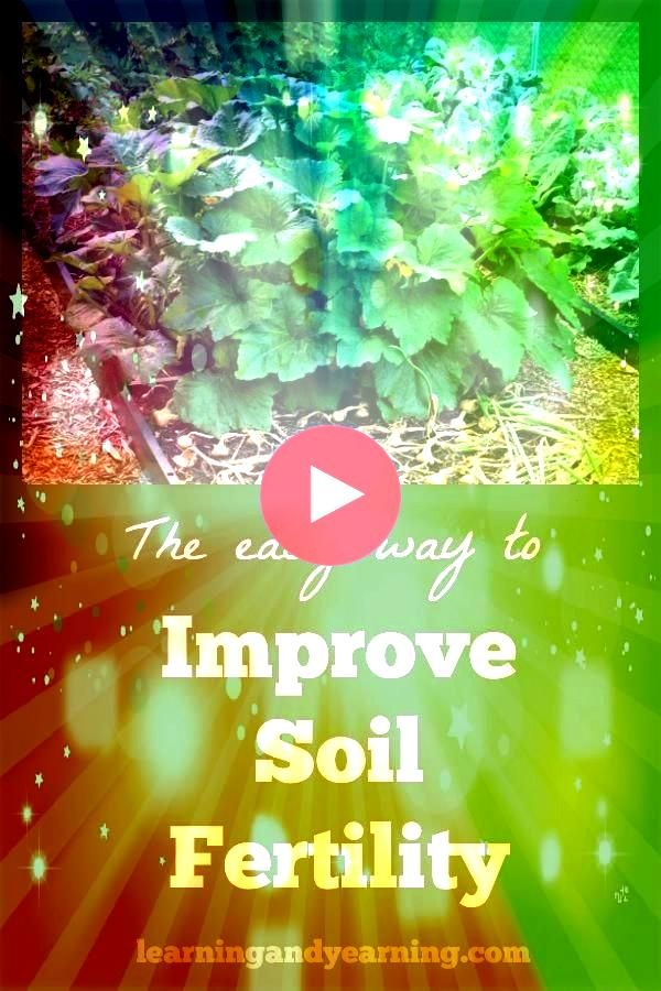 encourage my students to improve soil fertility because healthy fertile soil will result in a healthy nutrientdense harvestI always encourage my students to improve soil...