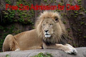 Free Zoo Admission Dad Lincoln Park Zoo Zoo Zoo Animals