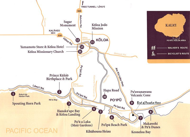 Poipu Hiking From Kauai Vacation Al Home Featuring Bird Of Paradise In Beach Kai Resort