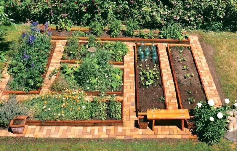 In Ground Vegetable Garden Raised Garden Bed Design How To