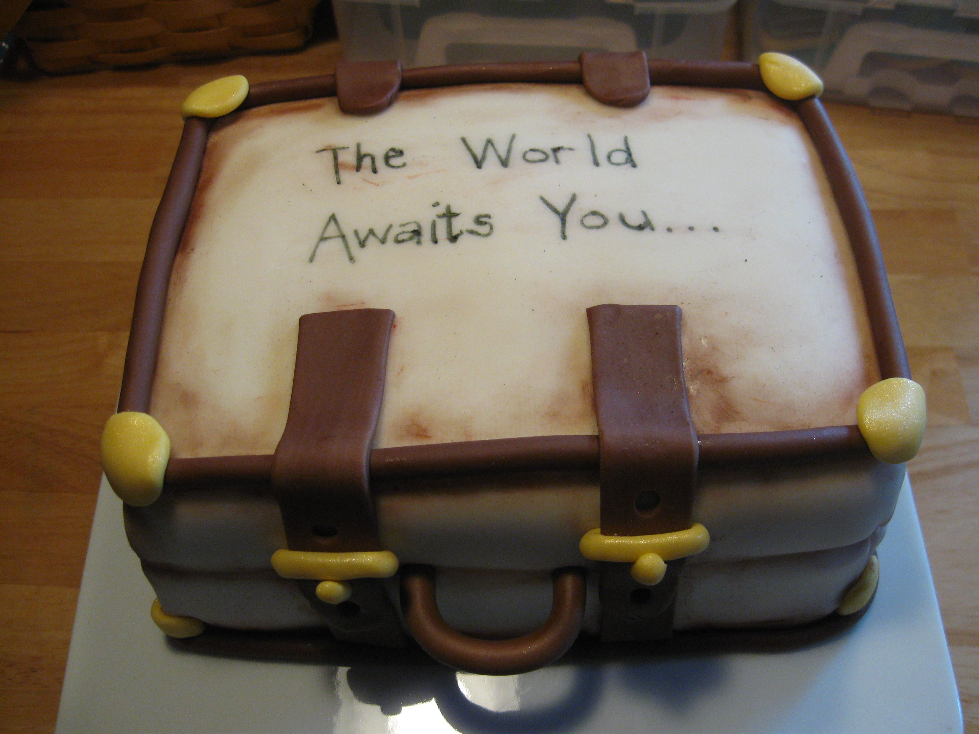 """Suitcase cake for """"Wel e to the World"""" world travel theme baby"""