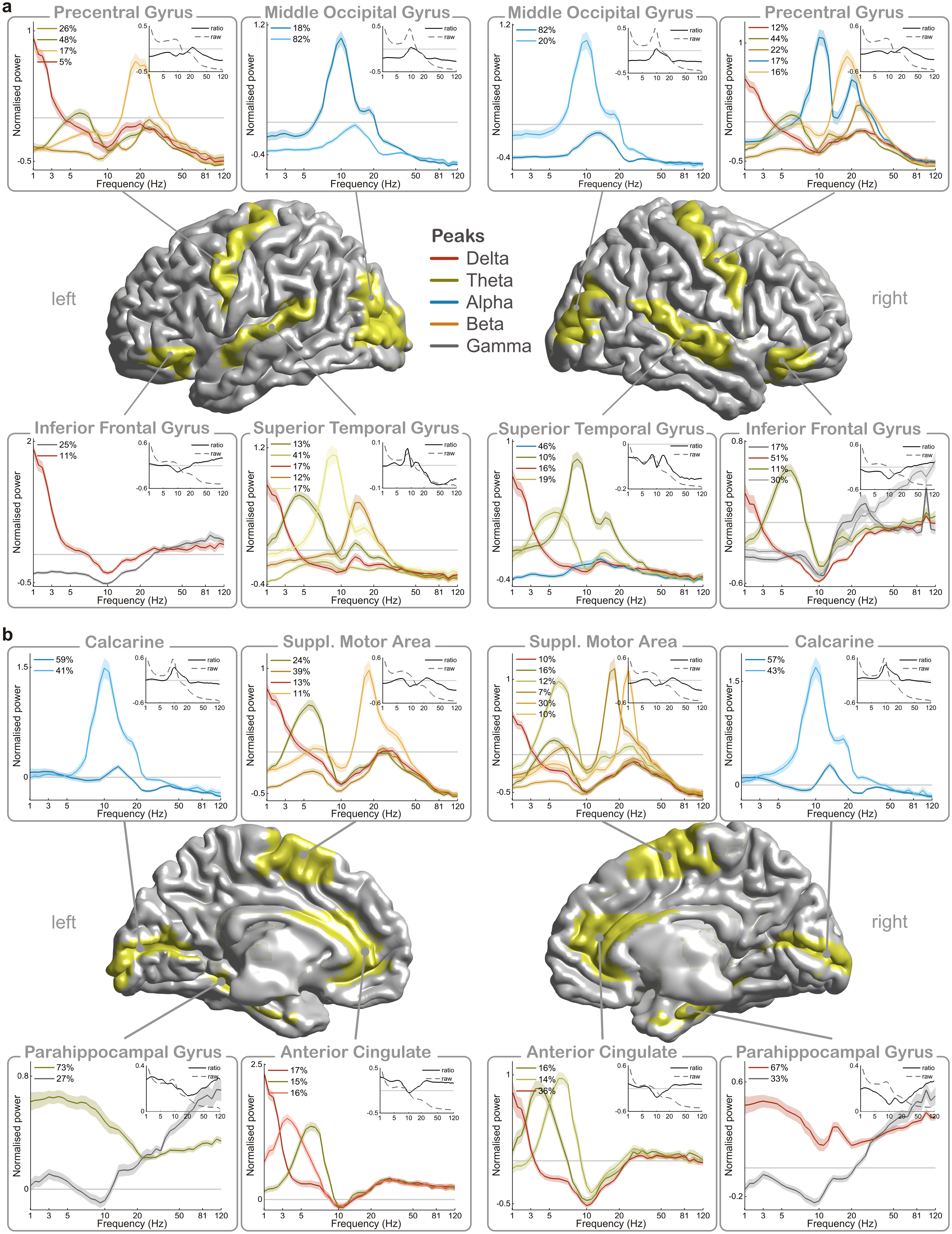 @wef : Each part of your brain has its own rhythmic fingerprint' https://t.co/IHLEXkvsbo https://t.co/ywTQ19x0fD