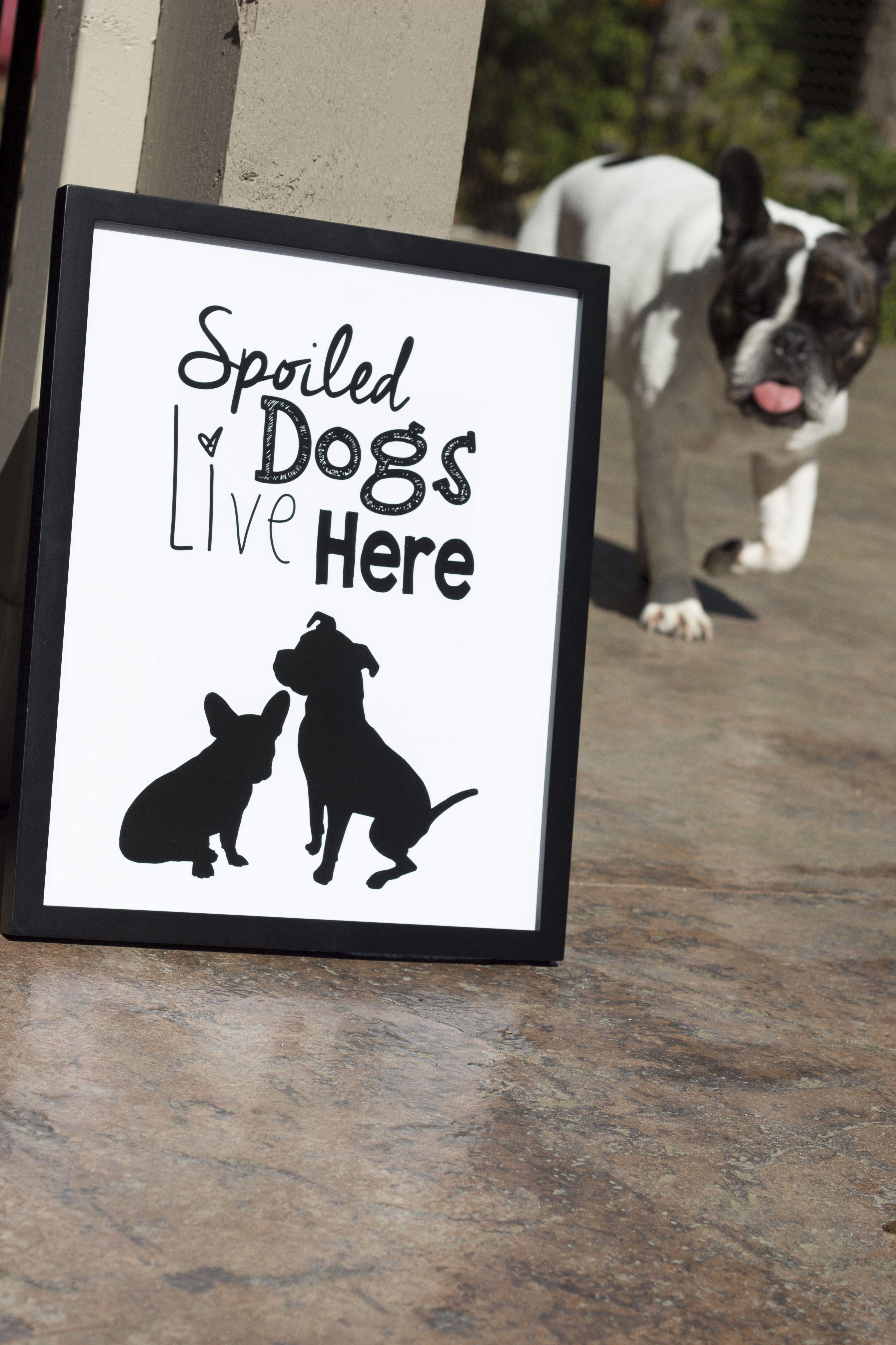 #bulldog #print @lucypaperco