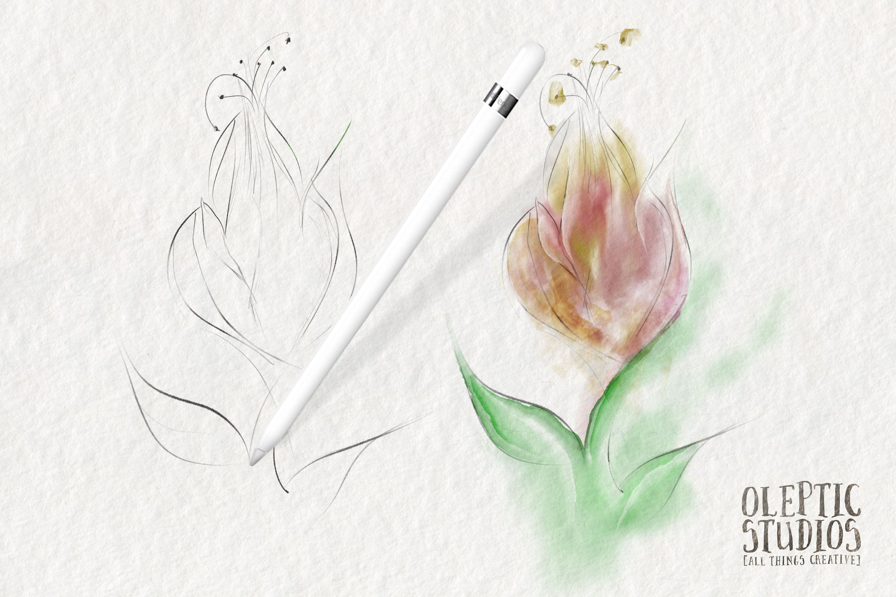 Best Watercolor Brushes Procreate Matter Buy Pigments Burn