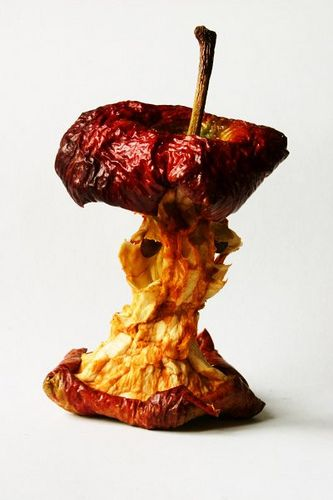 Red Apple Core Nine Days Decay Art Natural Form Art Fruit And Veg