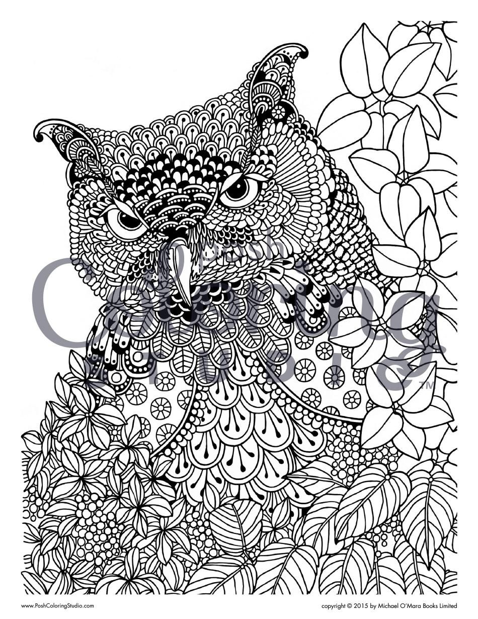 Pin On Animal Coloring Pages Posh [ 1229 x 950 Pixel ]