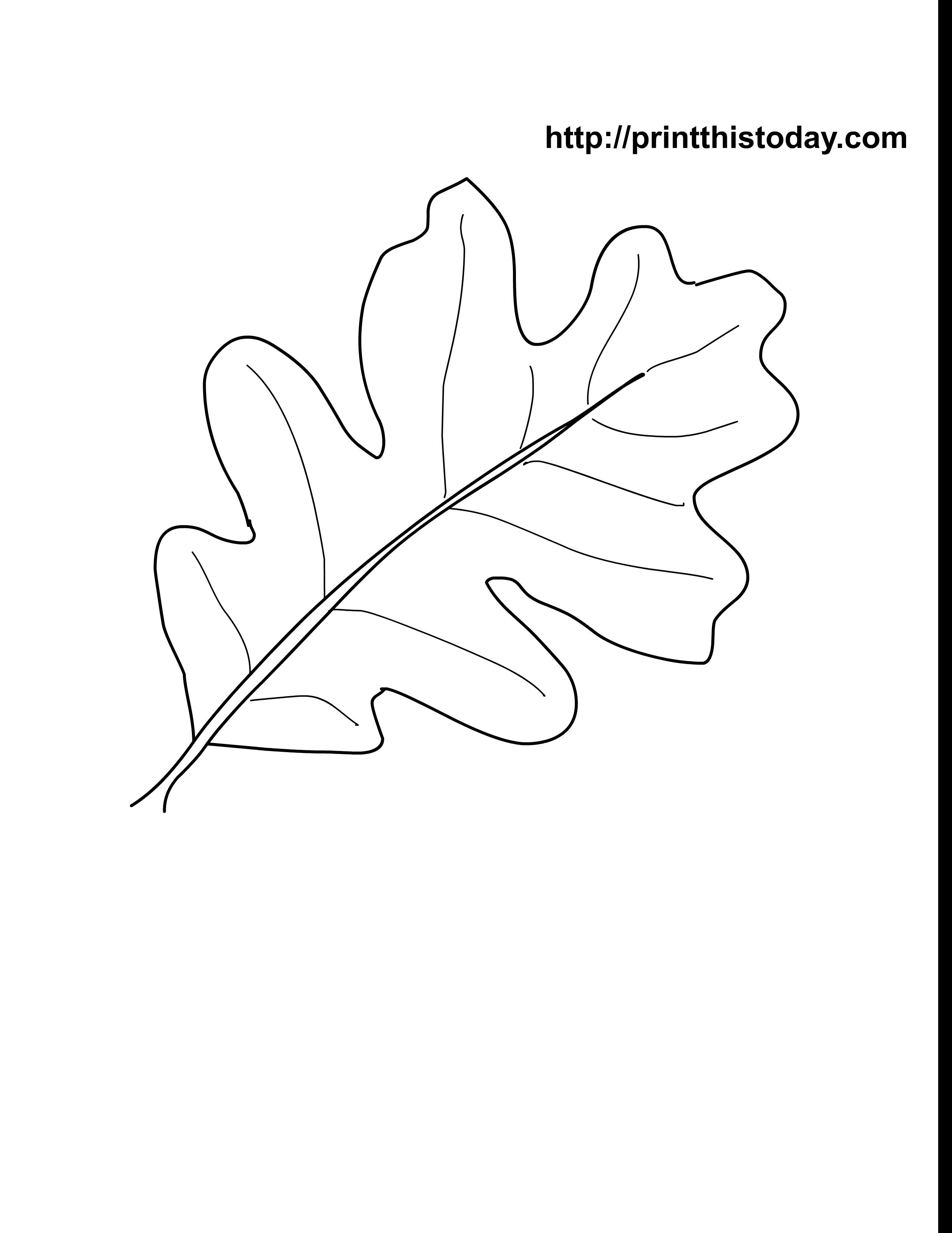 coloring pages oak leaf - photo#13