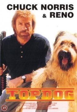 kyttä ja koira