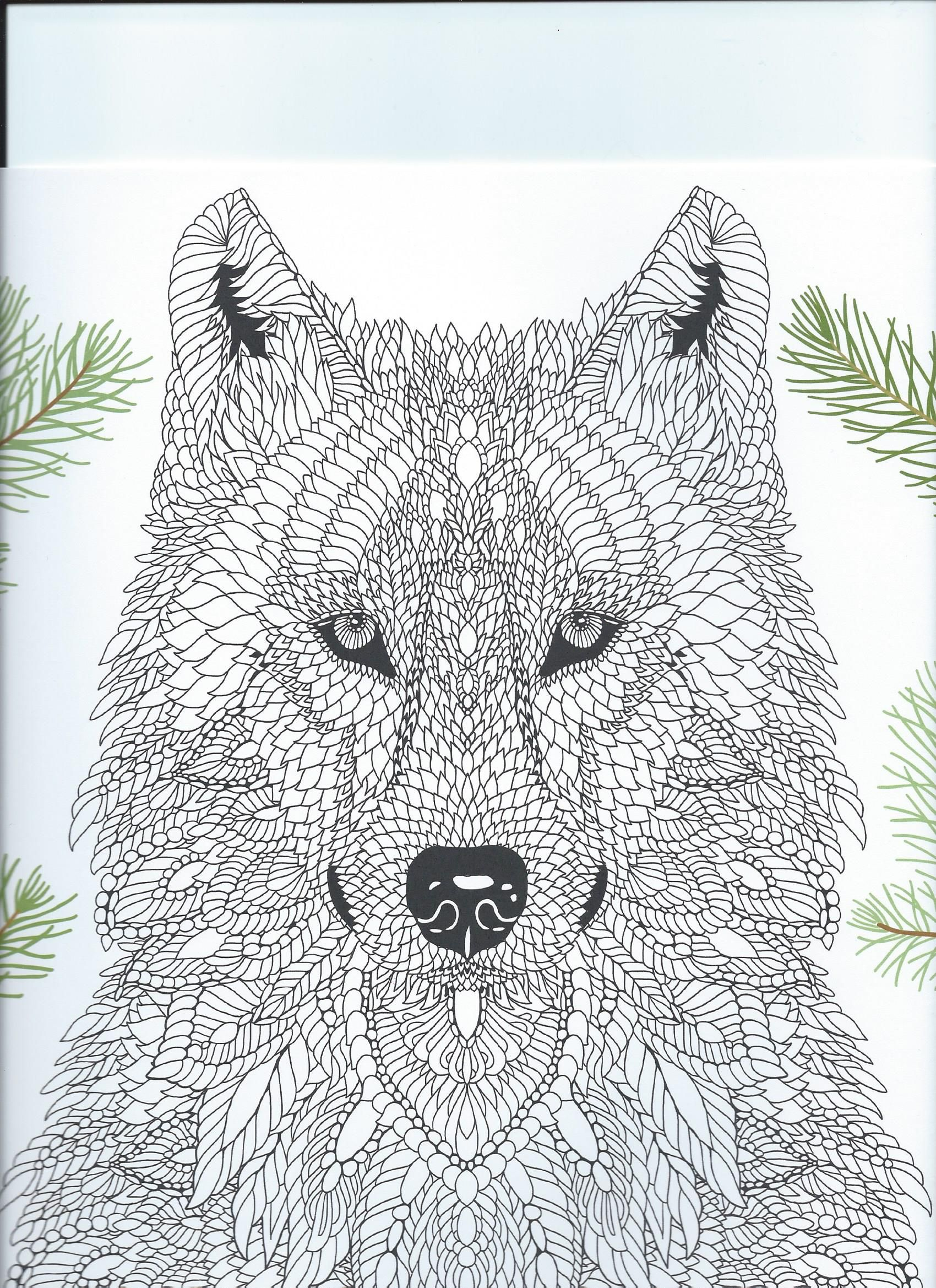 From The Coloring Book The Menagerie Animal Portraits To Color Dog Coloring Book Animal Coloring Books Animal Coloring Pages