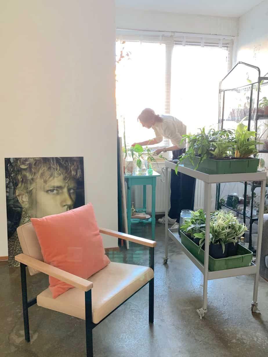 Een Huis Vol Planten Rvbangarang Org