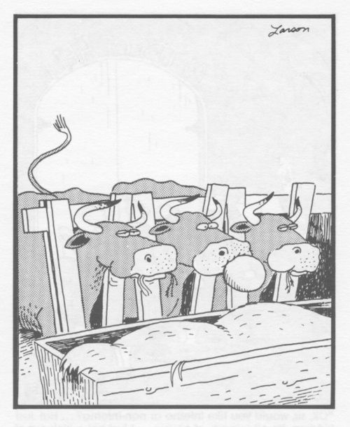 Classic Far Side Cartoons These Sentences Seem To