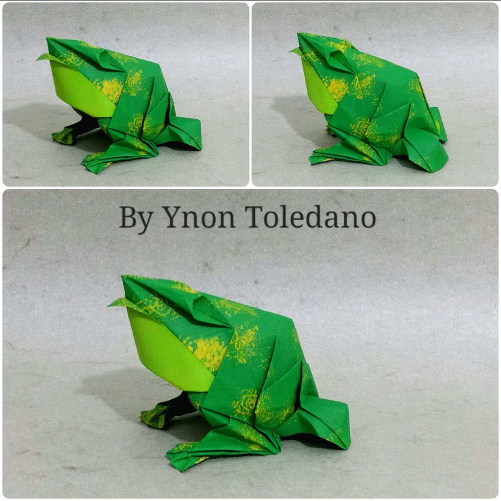 Frog designed by ynon toledano by ynont february 2017 origami frog designed by ynon toledano by ynont jeuxipadfo Image collections