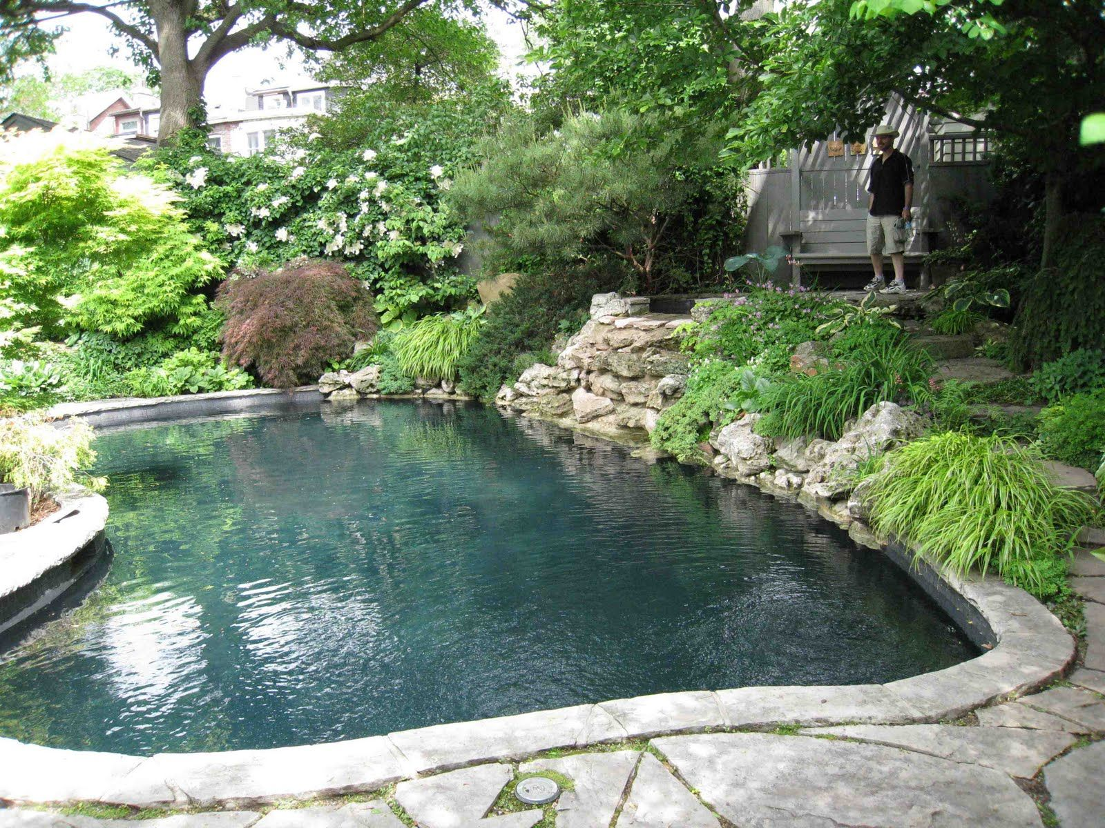back yard lagoon pools designs bing images - Lagoon Swimming Pool Designs