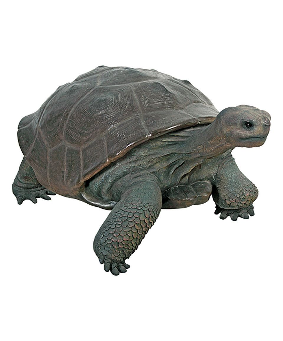 Grand Scale Galapagos Tortoise Statue By Design Toscano