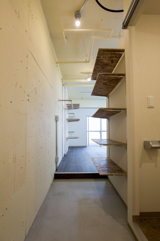玄関は広くシューズ棚も沢山ある為収納に困ることなく収納できるので