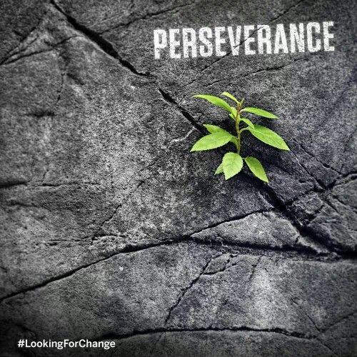 Perseverancia . Que tus pasos te guien con la luz d tu pensar y bendicion d nuestro Dios padre