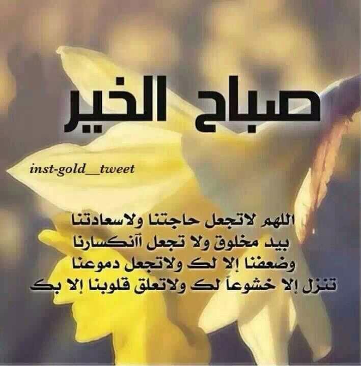 صباح الخير أحبتي تمنياتي بيوم سعيد للجميع Jour Nuit