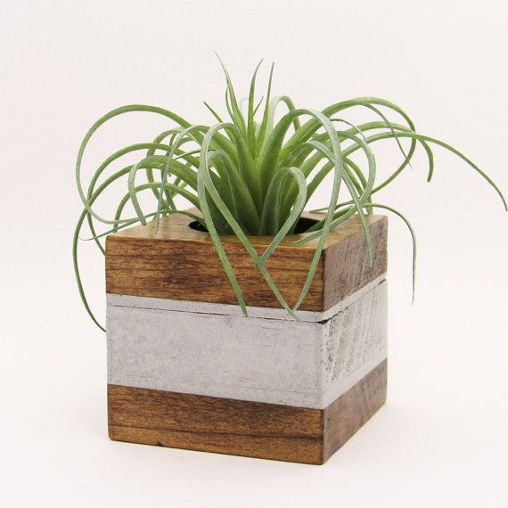 office planter boxes. small wood succulent planter pot modern cube plant holder indoor garden box office boxes