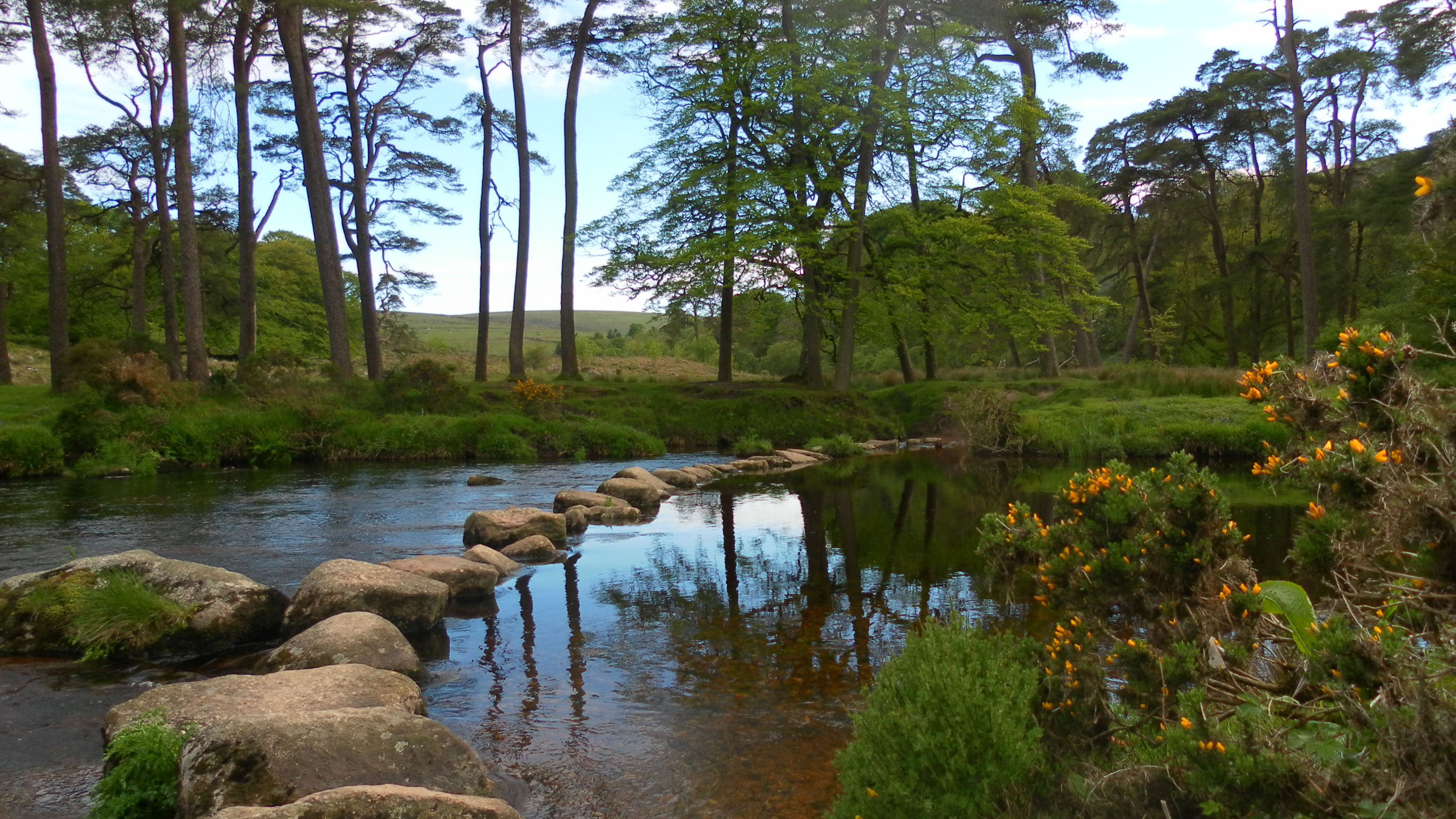 Reddit The Front Page Of The Internet Places To Visit Uk Dartmoor Places To Travel