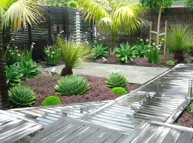 Australian native gardens ideas google search backyard for Garden design australia