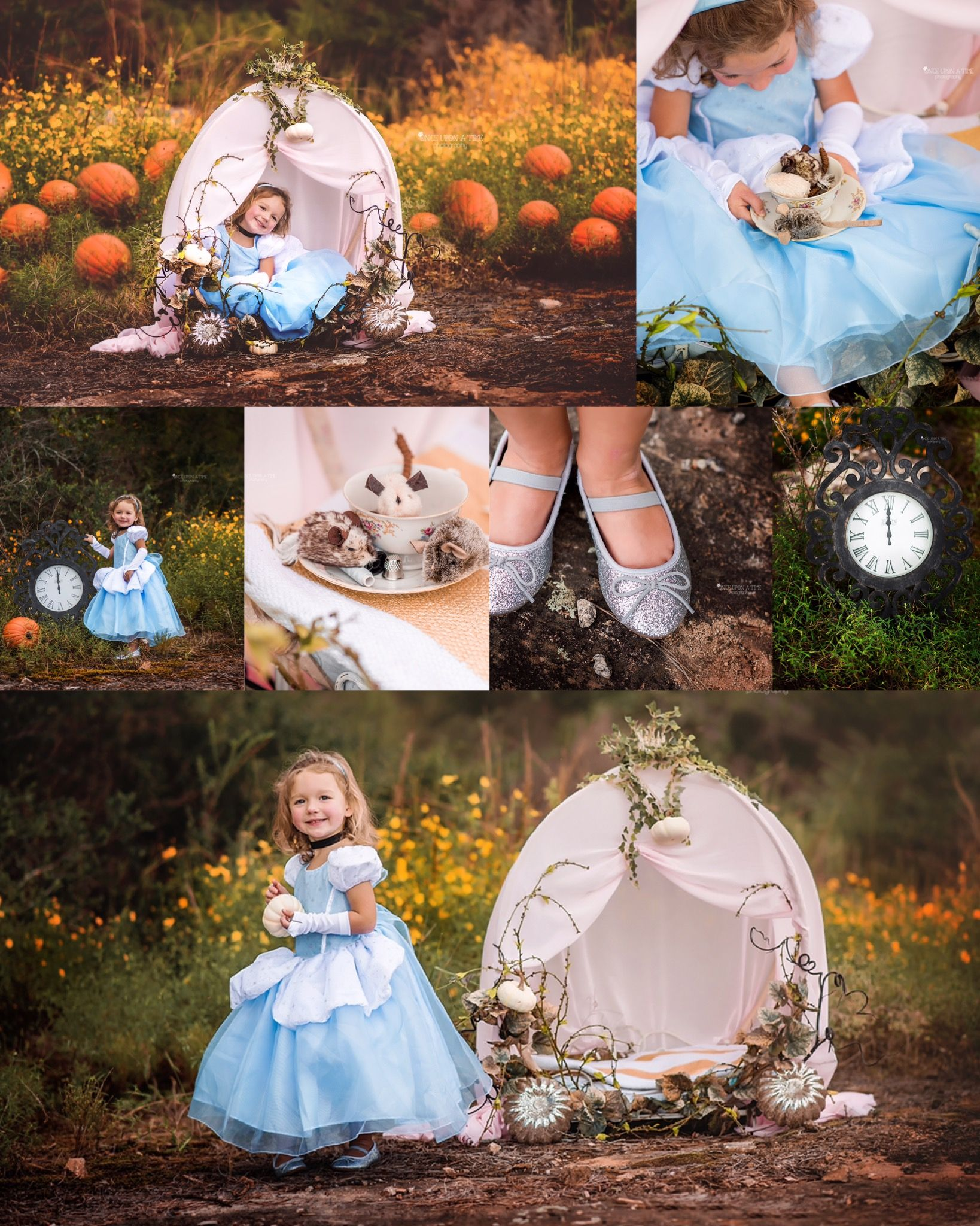 Cinderella themed photo session for little girls! The carriage is a diy  made from an iron dog bed … | Birthday photoshoot, Princess photo shoot,  Toddler photoshoot