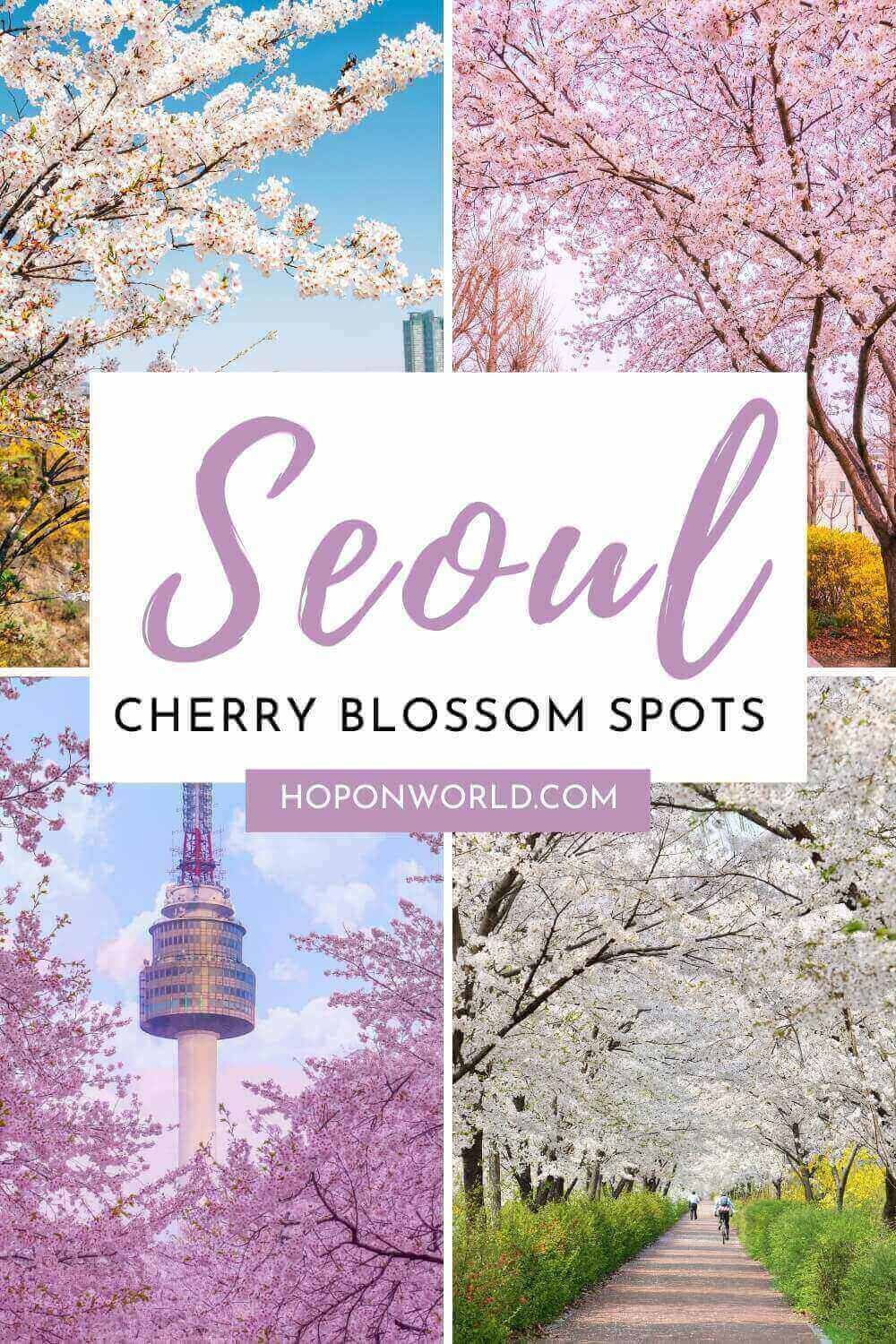Where To See Cherry Blossoms In Seoul Hoponworld In 2021 Spring Trip Asia Travel Cherry Blossom