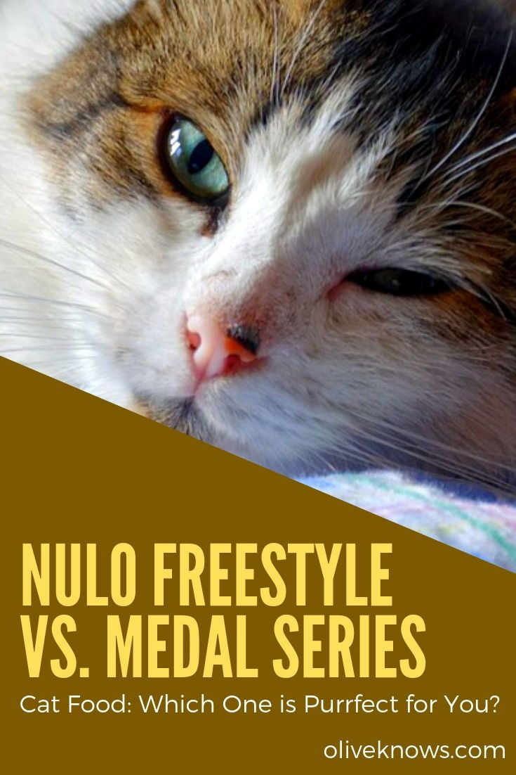 Nulo Freestyle vs Medal Series Cat Food [2020] Which One