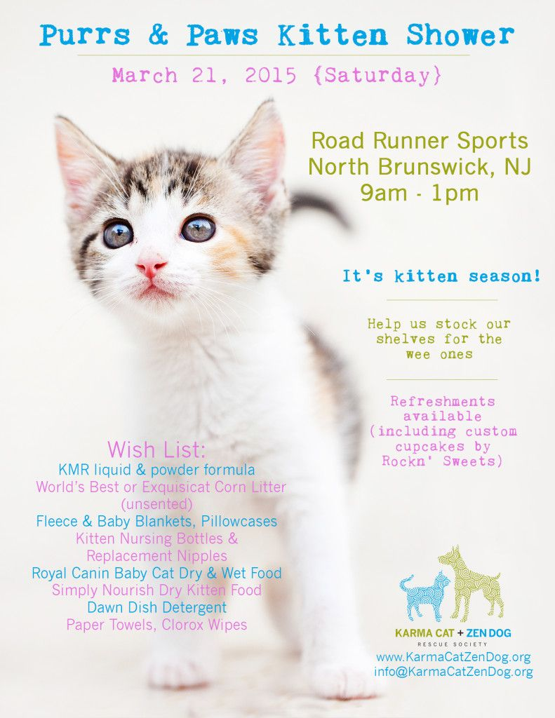 Purrs And Paws Kitten Shower Puppy Shower Kitten Season Animal