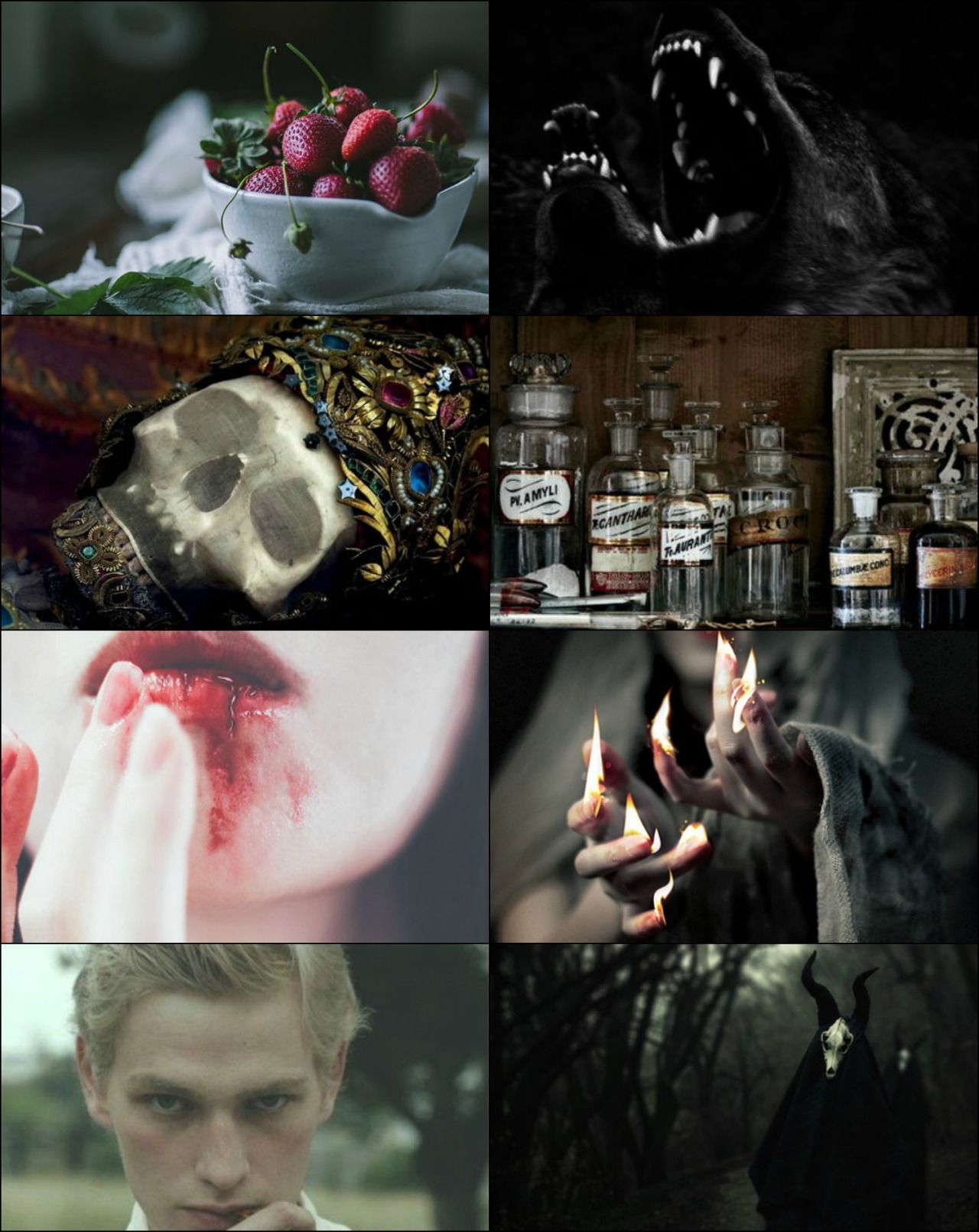 Literature Aesthetic: - The Ouroboros Cycle: Books 1 - 4 (Minimized.) The Ouroboros Cycle Series by G.D. Falksen