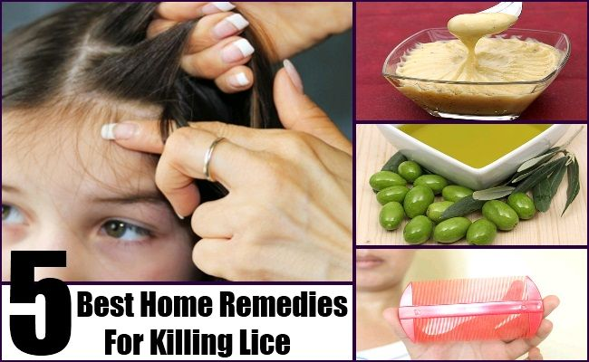 pin by fogut on home remedies for lice | pinterest, Skeleton