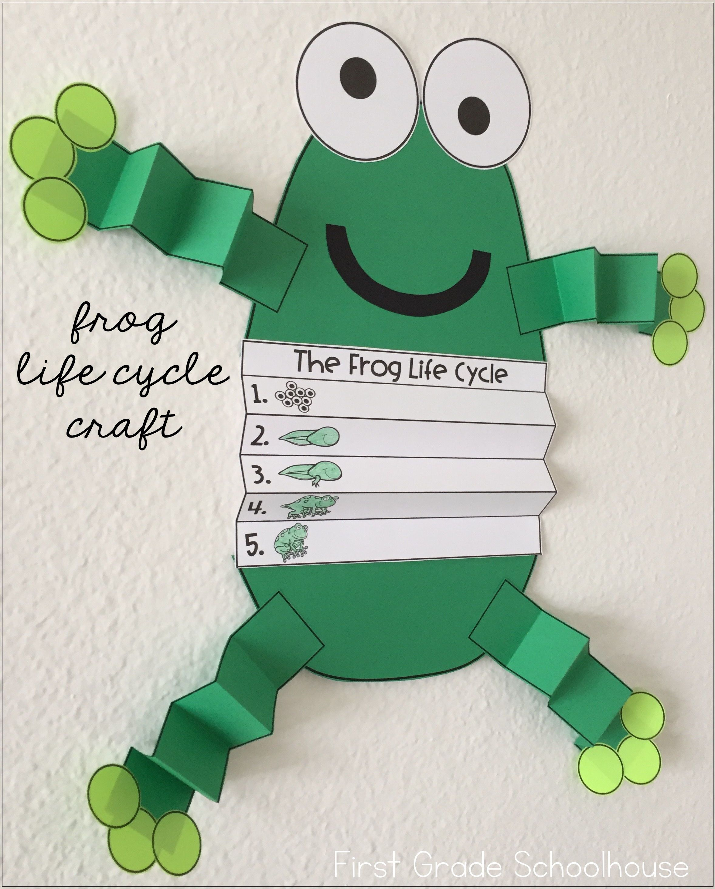 Kids Create This Frog Life Cycle Craft To Display Their Writing About The Life Cycle Of A Frog