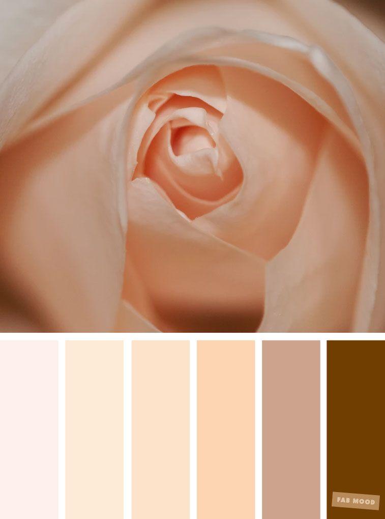 Beautiful Blush Paint Colors - Maison de Pax | Pink paint