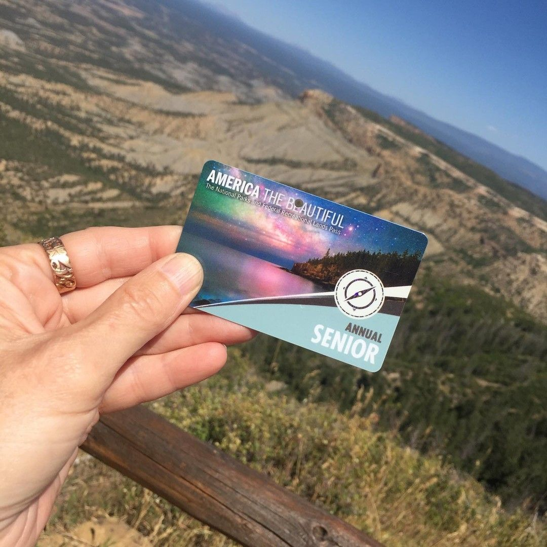 Calling All Seniors Did You Know You Can Get An Annual Park Pass For 20 Or 80 For A Lifetime Amer Mesa Verde National Park Travel Inspiration National Parks