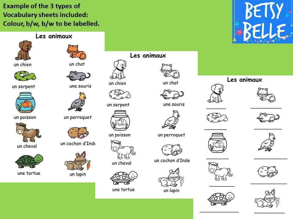 printable worksheets 187 basic french vocabulary worksheets