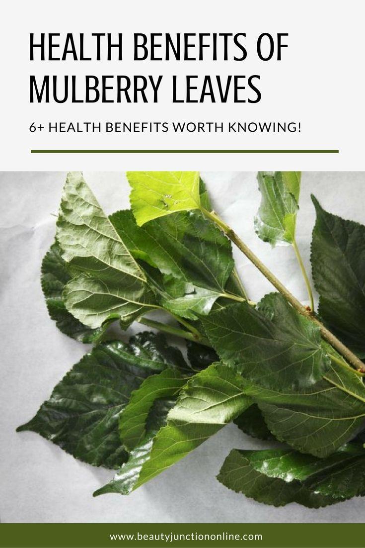 10 Amazing Health Benefits Of Mullein Tea advise